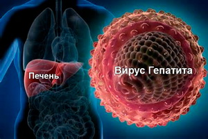 Профилактика гепатита буклеты