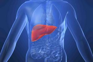 Острый вирусный гепатит и его лечение народными рецептами