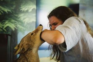 Бешенство у человека: симптомы и профилактика при укусах животных