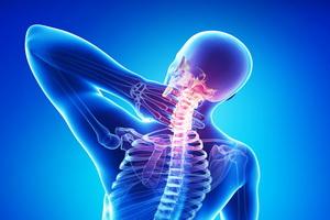 Остеохондроз и остеопороз: причины и лечение народными средствами