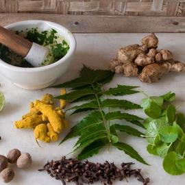 Препараты чеснока для снижения холестерина