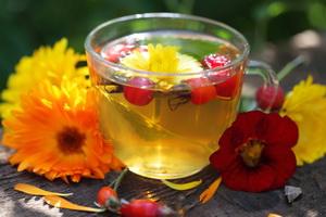 Лечение заболеваний желчного пузыря народными средствами: травы и тюбаж
