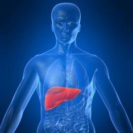 Какие бывают гепатиты печени и его лечение