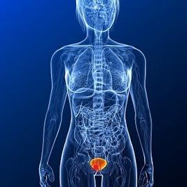 Лечение механической желтухи при раке поджелудочной железы — Лечим печень