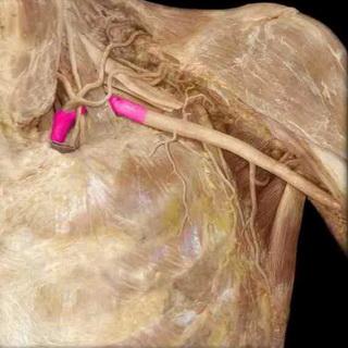 Чем лечить гнойную рану при грудном вскармливании