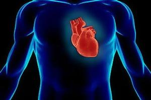 Атеросклероз грудной и брюшной аорты