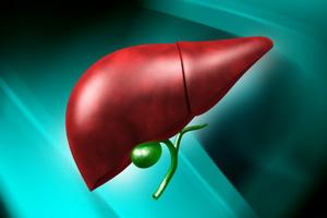 Лечение рака печени народными средствами