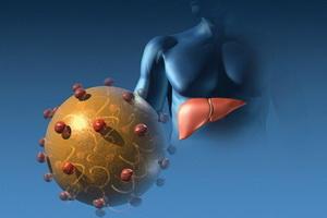 Аутоиммунный гепатит печени: признаки, диагностика и лечение