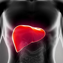 Обострение хронического гепатита лечение
