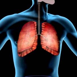Лекарства при раке печени — Лечим печень