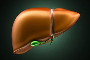 Пигментный обмен печени и основные синдромы поражения