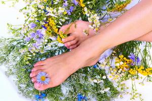 Народные средства при болезнях сосудов ног у человека (с фото)