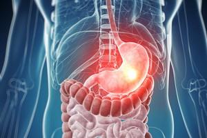 Гастрит желудка у взрослых: основные виды, симптомы и лечение
