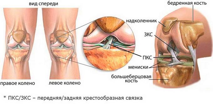 Специфика травматических повреждений мягких тканей
