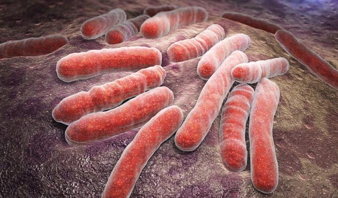 Специфический возбудитель туберкулеза – провокатор болезни